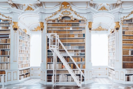Image of baroque library shelves and a ladder to access the upper shelves.